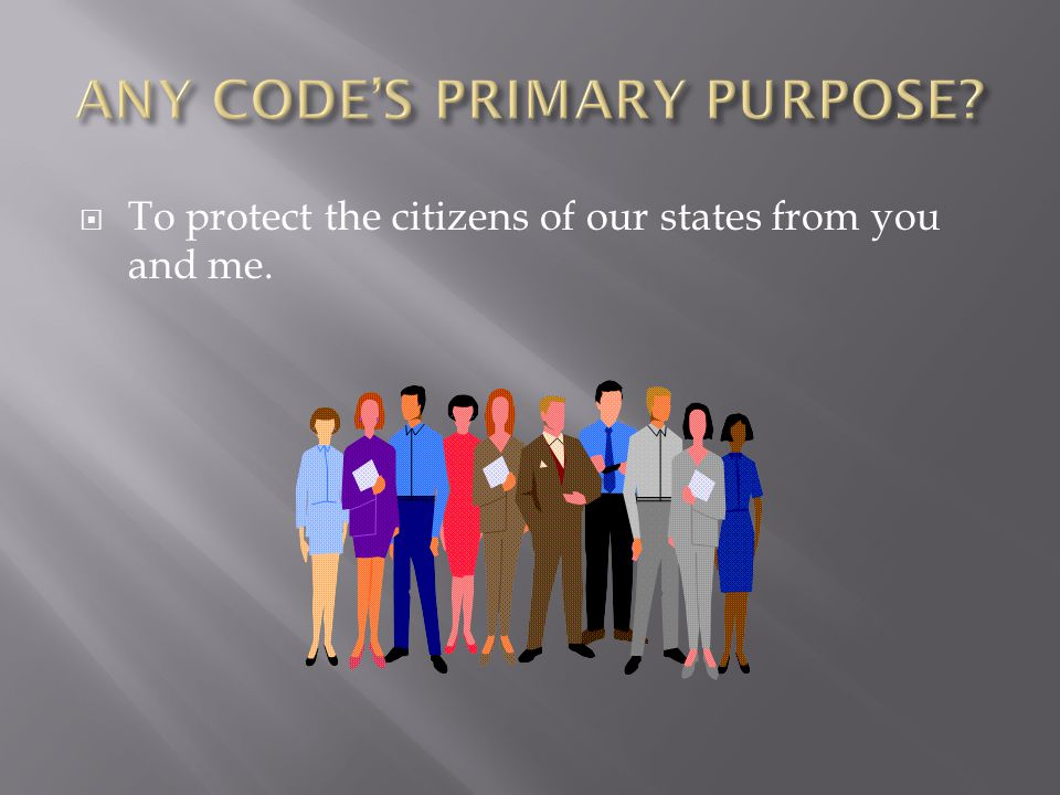 ANY CODE'S PRIMARY PURPOSE