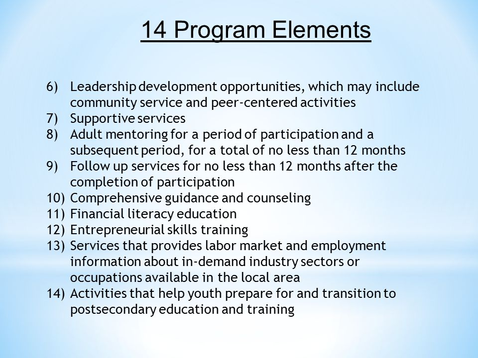 14 Program Elements Leadership development opportunities, which may include community service and peer-centered activities.