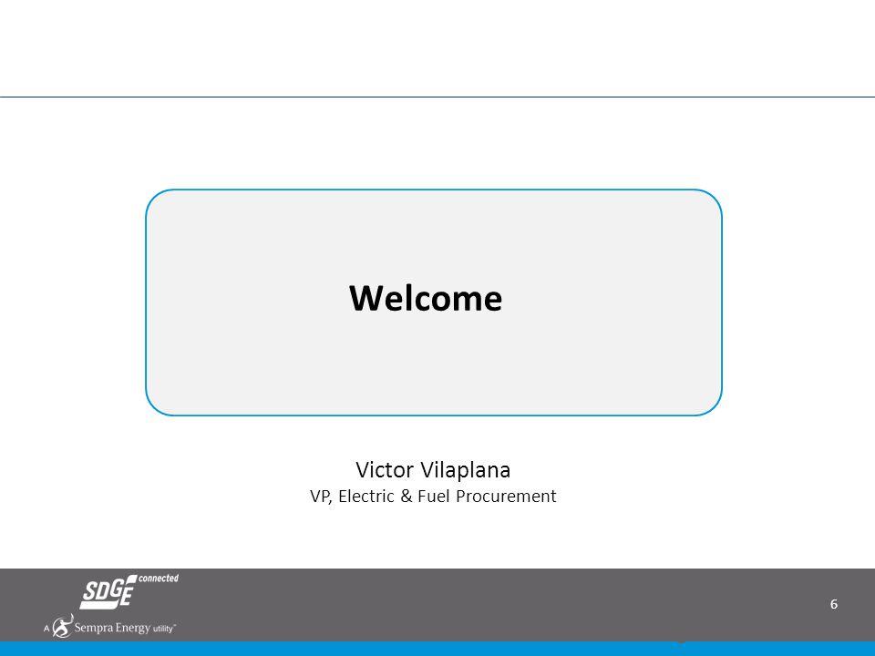 Welcome Victor Vilaplana VP, Electric & Fuel Procurement