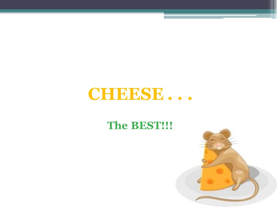 CHEESE . . . The BEST!!!