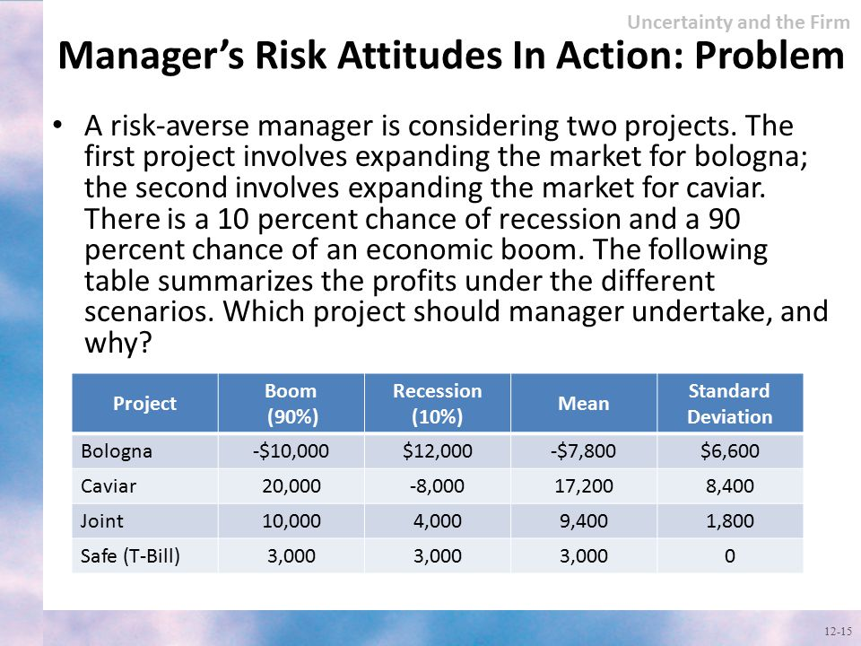 Manager's Risk Attitudes In Action: Problem