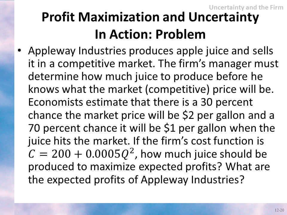 Profit Maximization and Uncertainty In Action: Problem