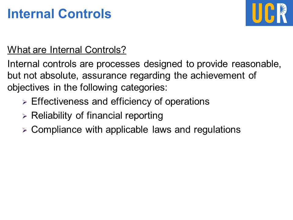 Internal Controls What are Internal Controls