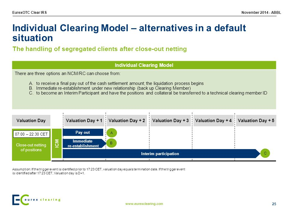 Individual Clearing Model – alternatives in a default situation