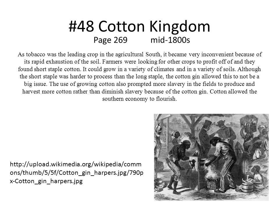 #48 Cotton Kingdom Page 269 mid-1800s