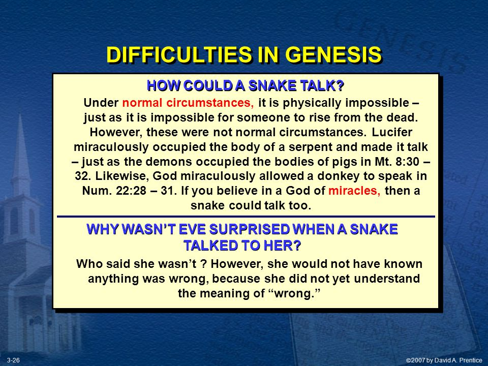 DIFFICULTIES IN GENESIS WHY WASN'T EVE SURPRISED WHEN A SNAKE