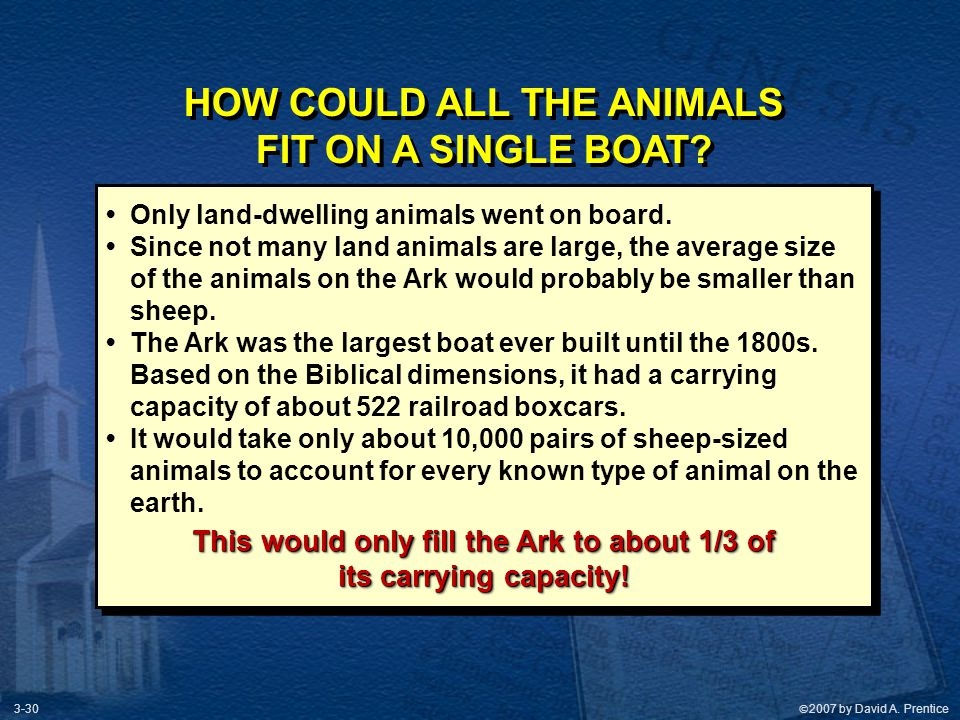 HOW COULD ALL THE ANIMALS This would only fill the Ark to about 1/3 of