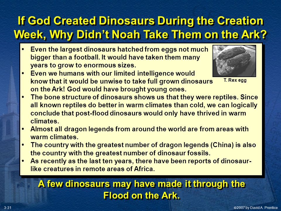 If God Created Dinosaurs During the Creation