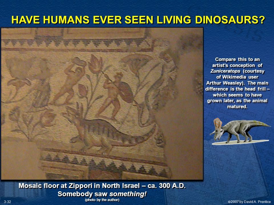 HAVE HUMANS EVER SEEN LIVING DINOSAURS