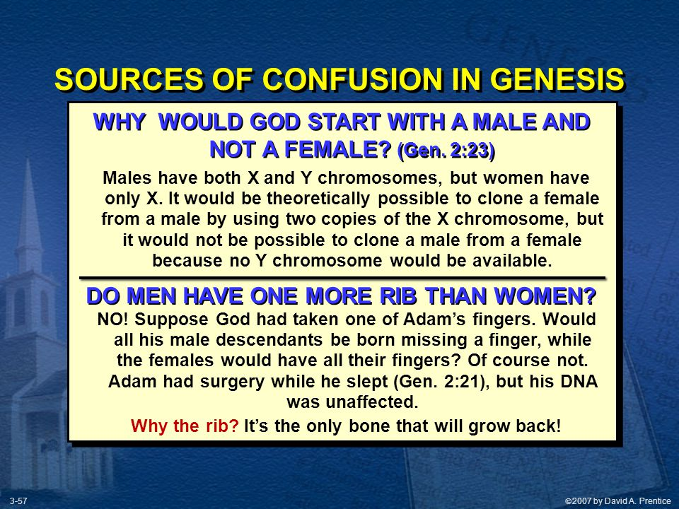 SOURCES OF CONFUSION IN GENESIS