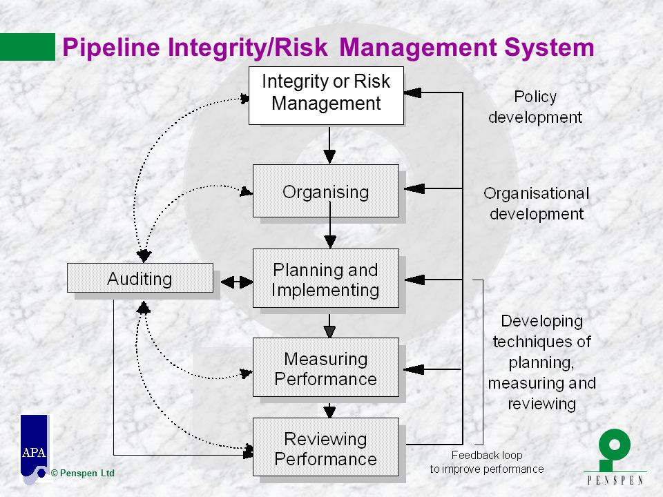 Pipeline Integrity/Risk Management System