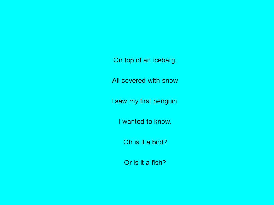 On top of an iceberg, All covered with snow I saw my first penguin