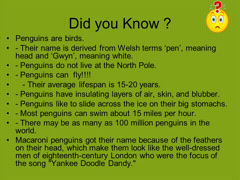 Did you Know Penguins are birds.