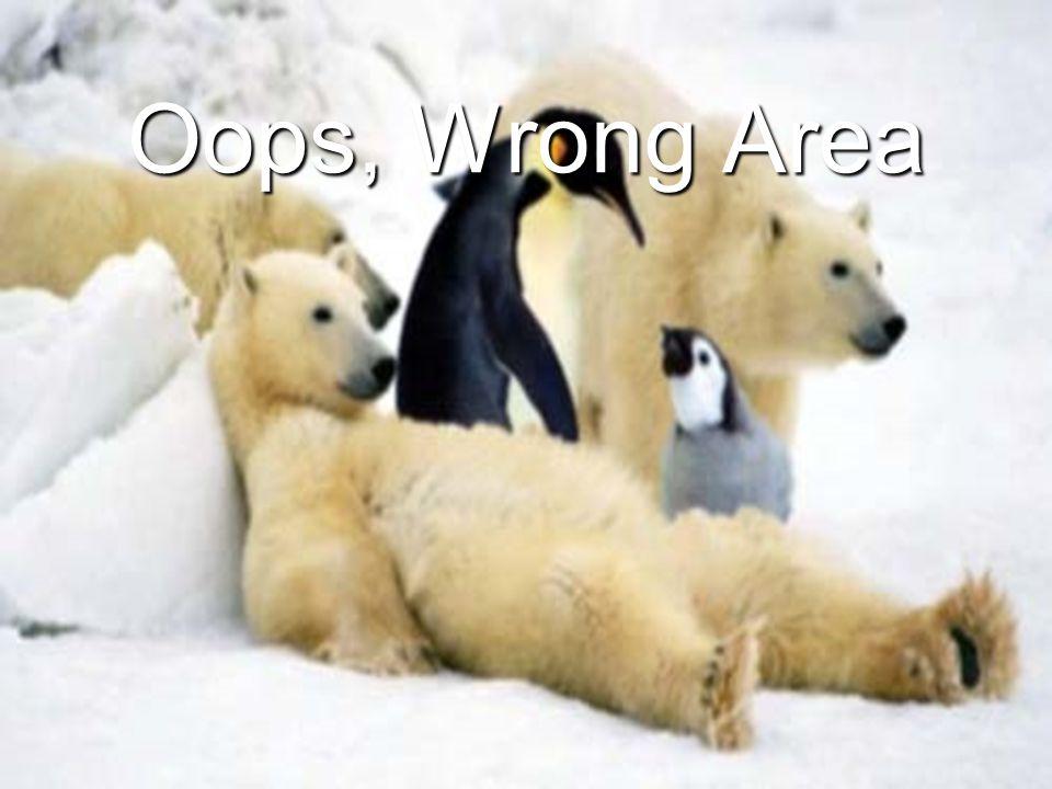 Oops, Wrong Area