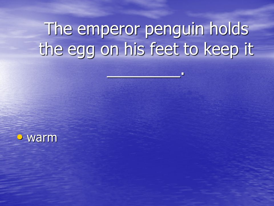 The emperor penguin holds the egg on his feet to keep it ________.