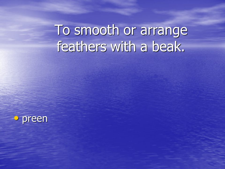 To smooth or arrange feathers with a beak.