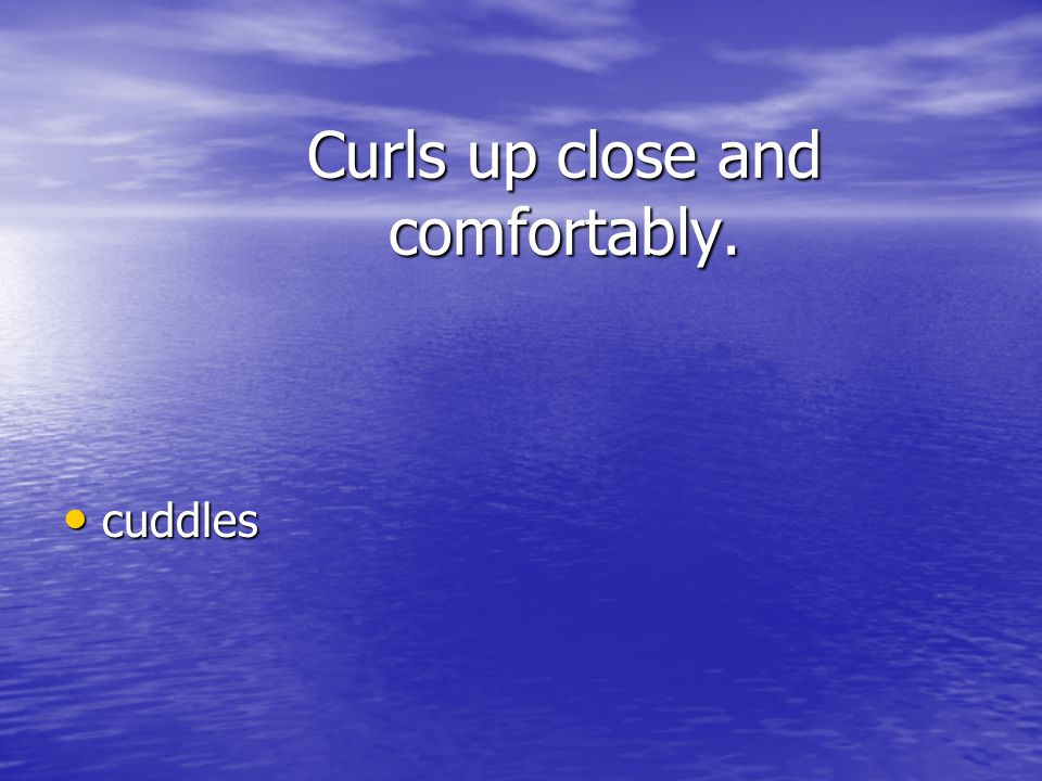 Curls up close and comfortably.