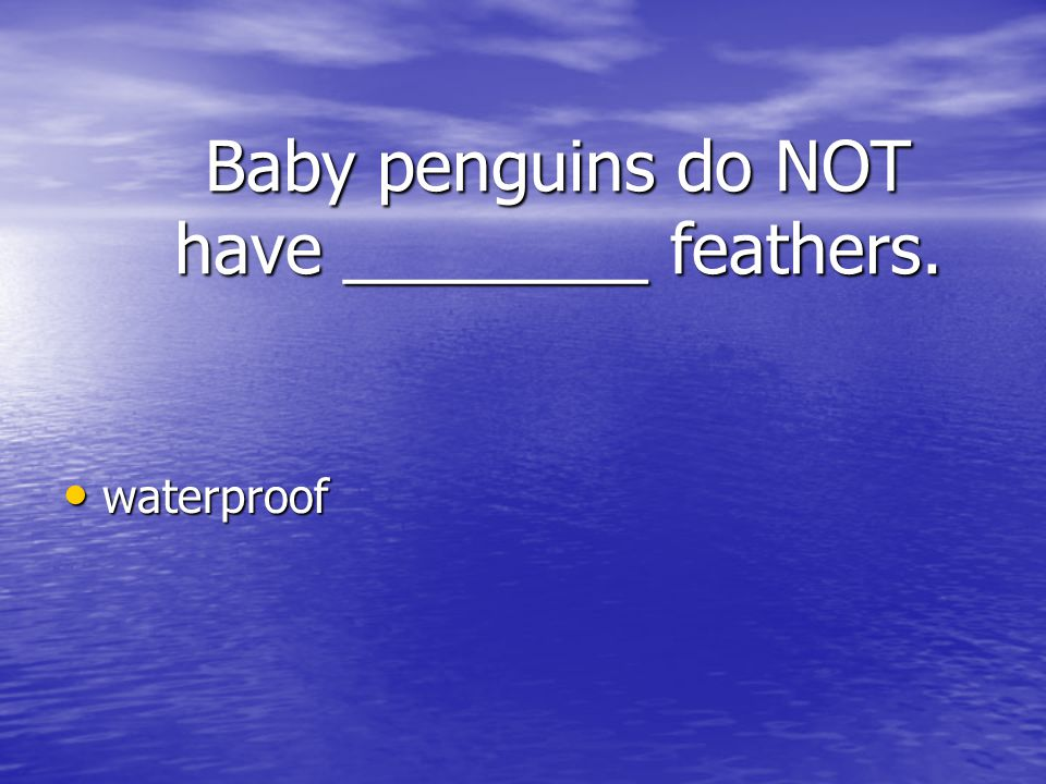Baby penguins do NOT have ________ feathers.