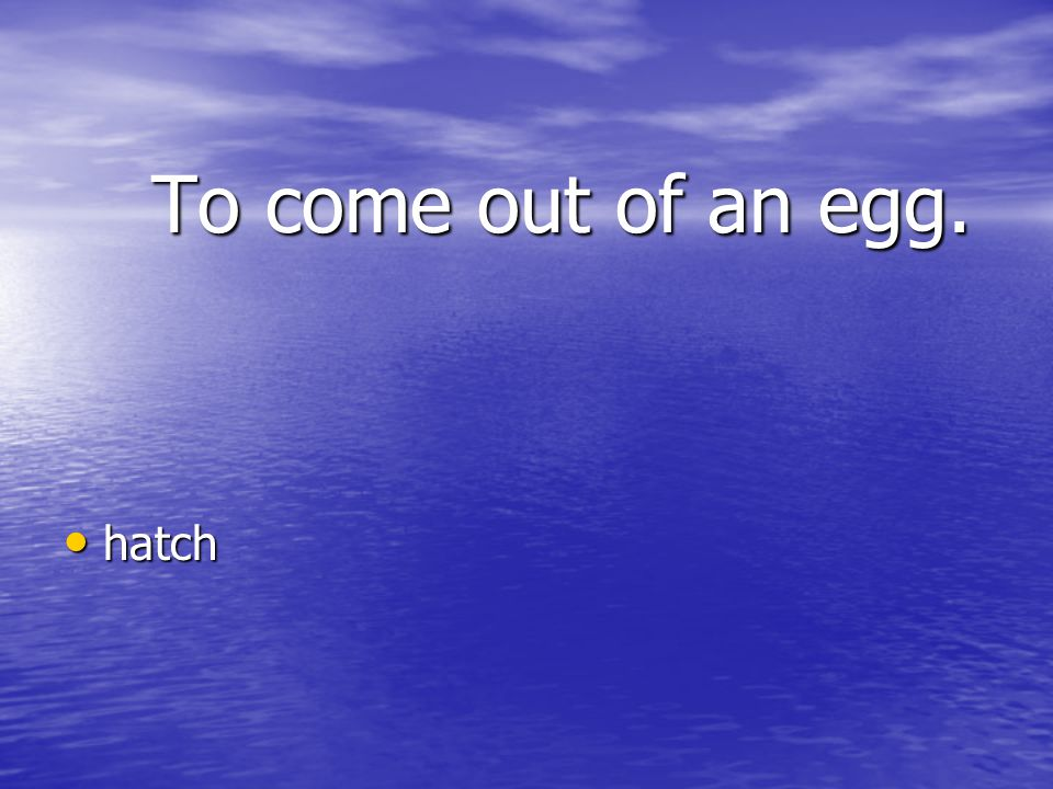 To come out of an egg. hatch