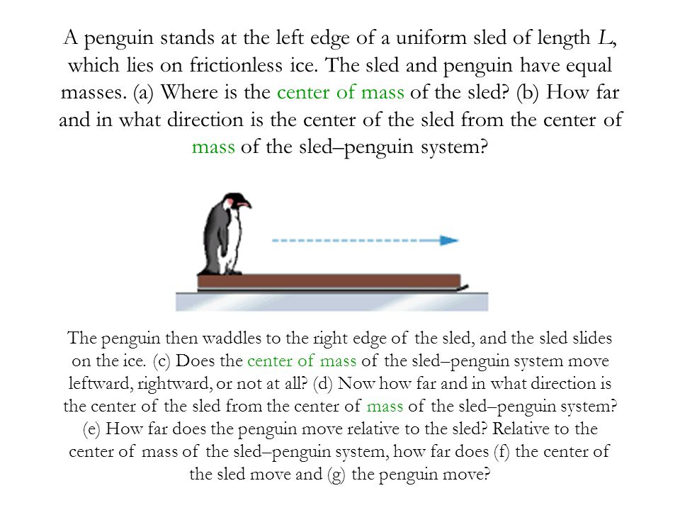 A penguin stands at the left edge of a uniform sled of length L, which lies on frictionless ice. The sled and penguin have equal masses. (a) Where is the center of mass of the sled (b) How far and in what direction is the center of the sled from the center of mass of the sled–penguin system