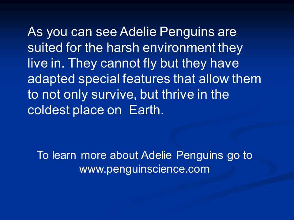 To learn more about Adelie Penguins go to www.penguinscience.com