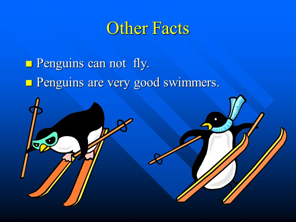 Other Facts Penguins can not fly. Penguins are very good swimmers.