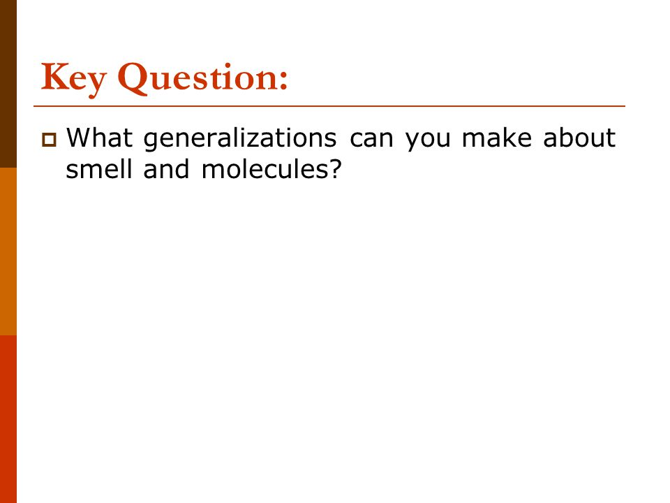 Key Question: What generalizations can you make about smell and molecules