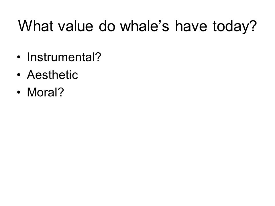 What value do whale's have today