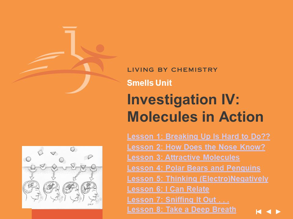 Investigation IV: Molecules in Action