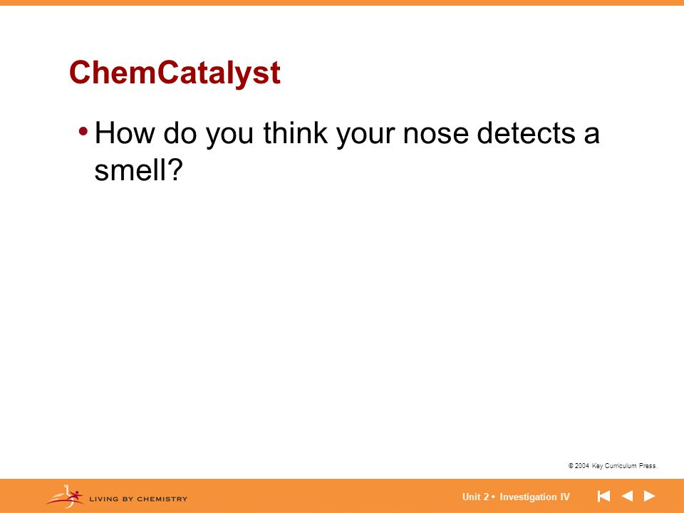 ChemCatalyst How do you think your nose detects a smell