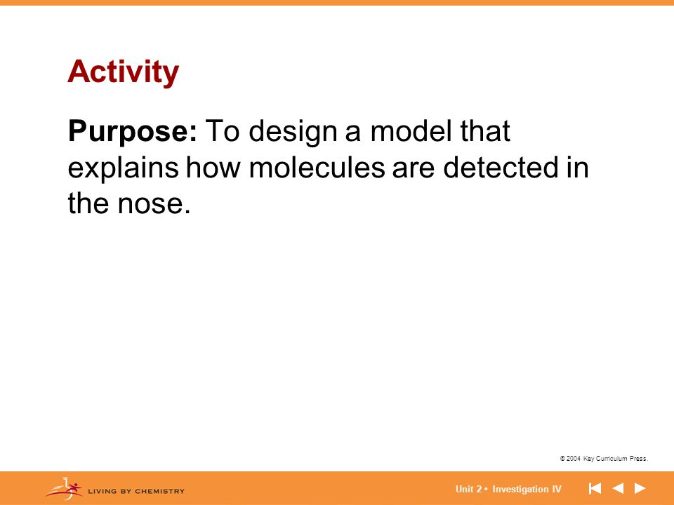 Activity Purpose: To design a model that explains how molecules are detected in the nose.