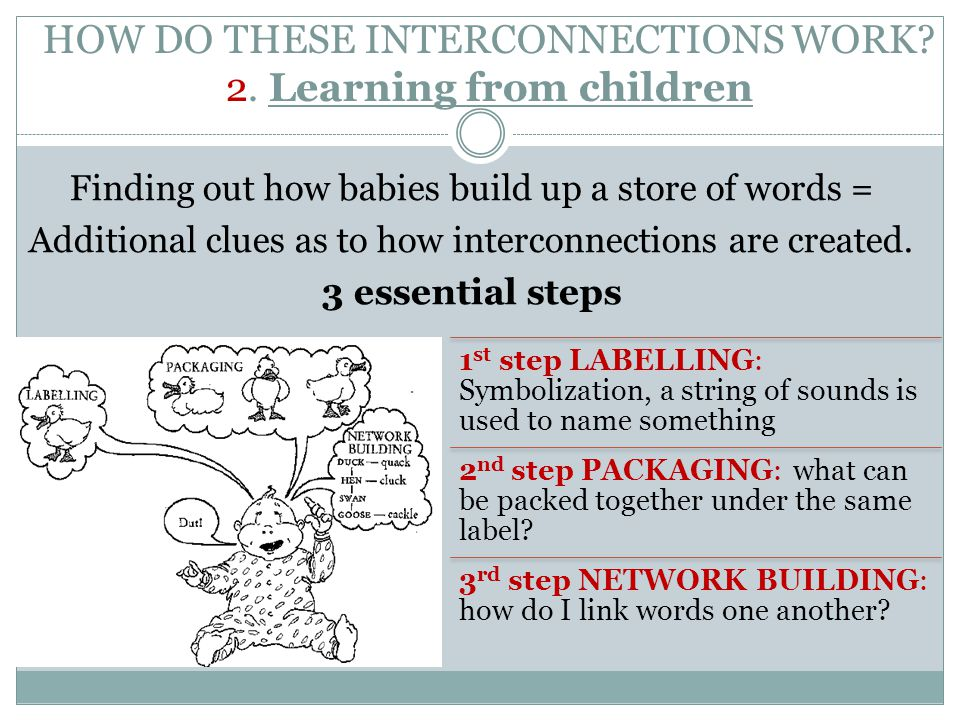 HOW DO THESE INTERCONNECTIONS WORK 2. Learning from children