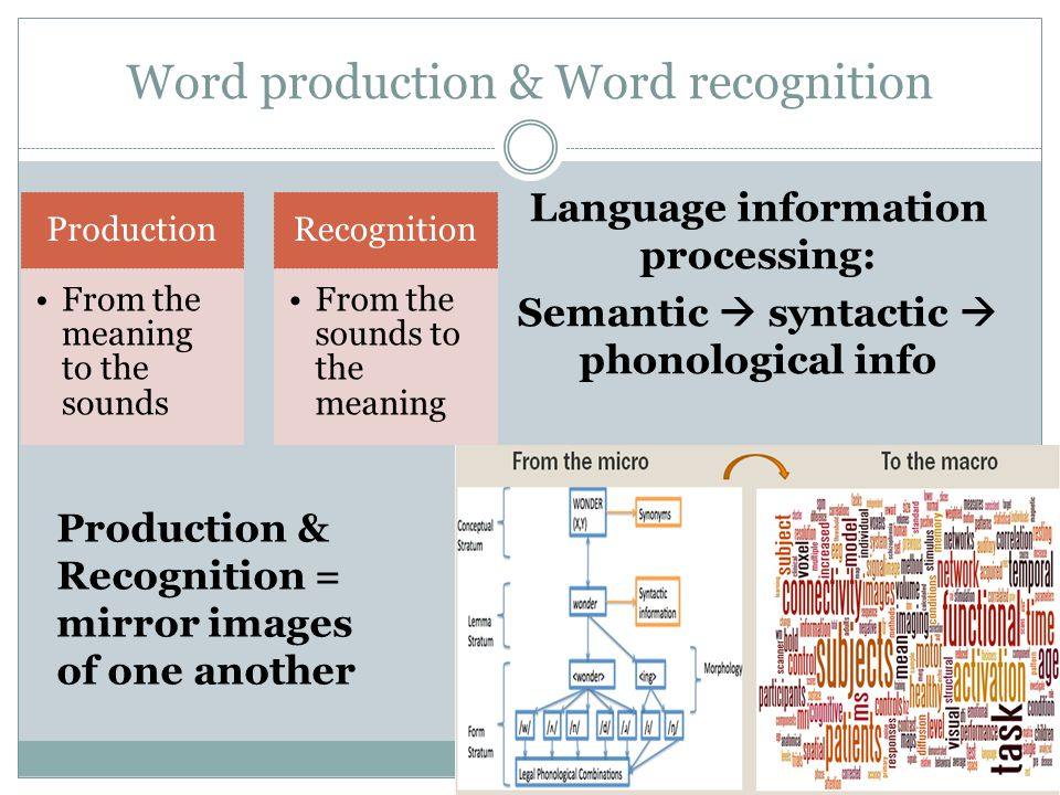 Word production & Word recognition