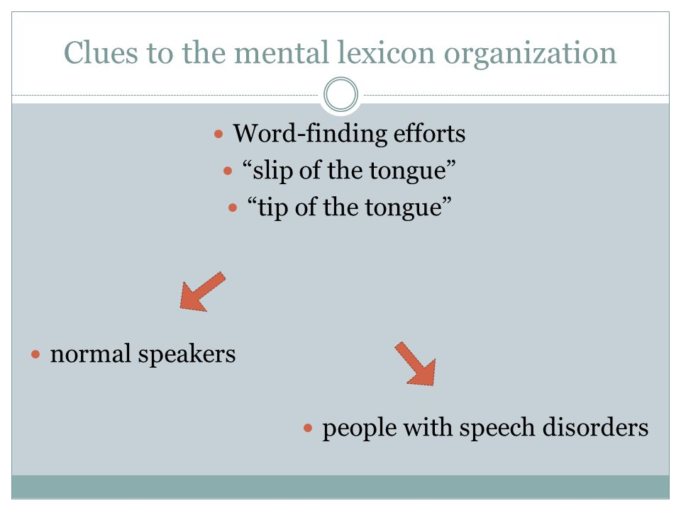 Clues to the mental lexicon organization