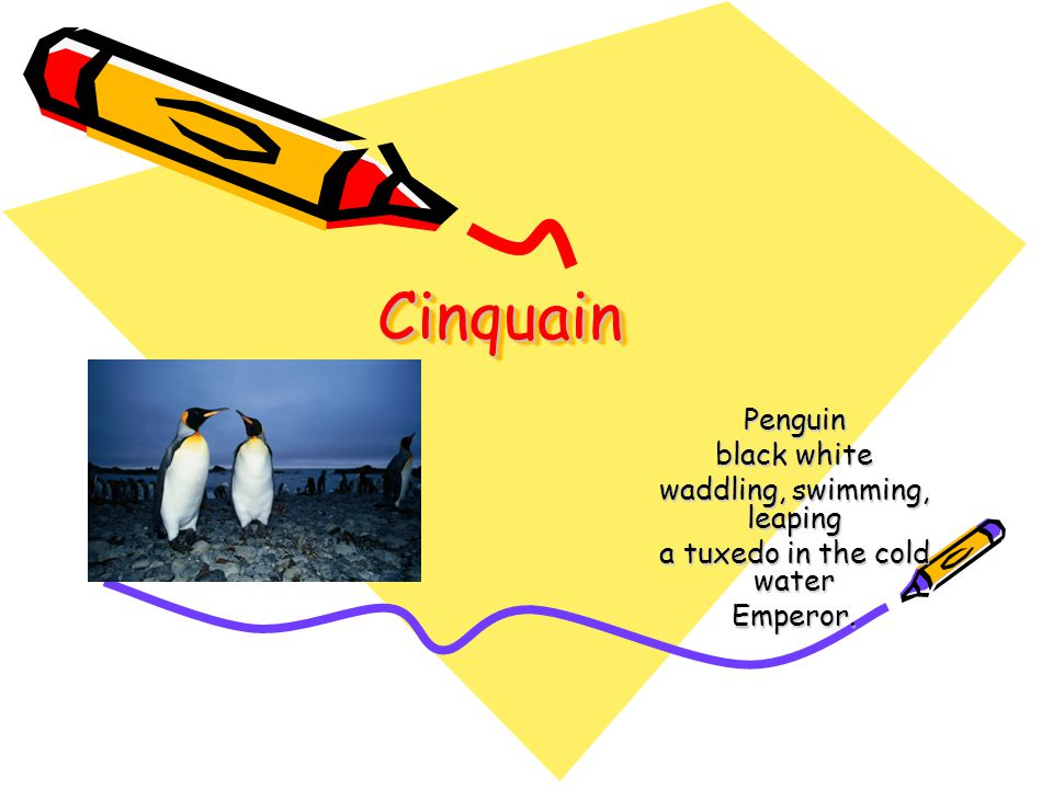 Cinquain Penguin black white waddling, swimming, leaping