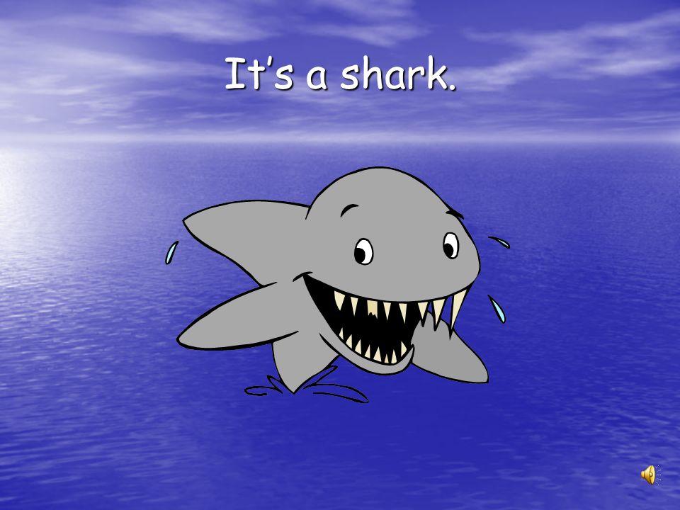 It's a shark.