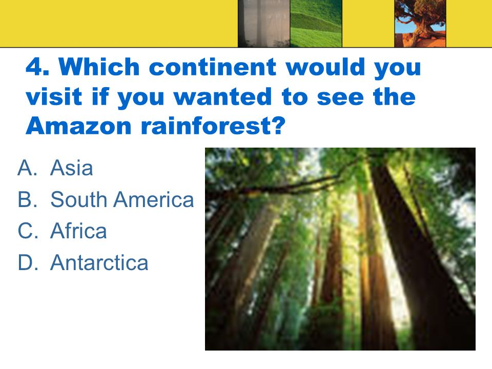4. Which continent would you visit if you wanted to see the Amazon rainforest