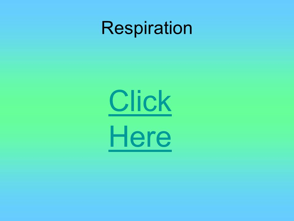 Respiration Click Here