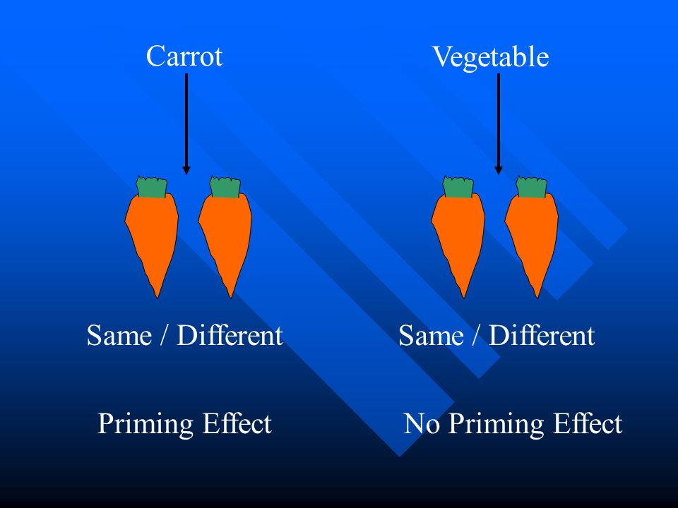 Carrot Vegetable Same / Different Same / Different Priming Effect No Priming Effect