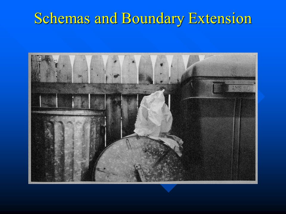Schemas and Boundary Extension