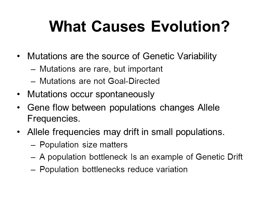 What Causes Evolution Mutations are the source of Genetic Variability