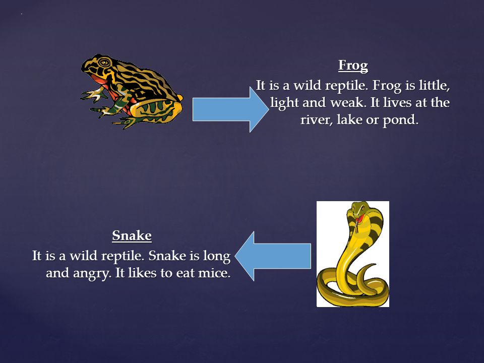 . Frog It is a wild reptile. Frog is little, light and weak. It lives at the river, lake or pond.