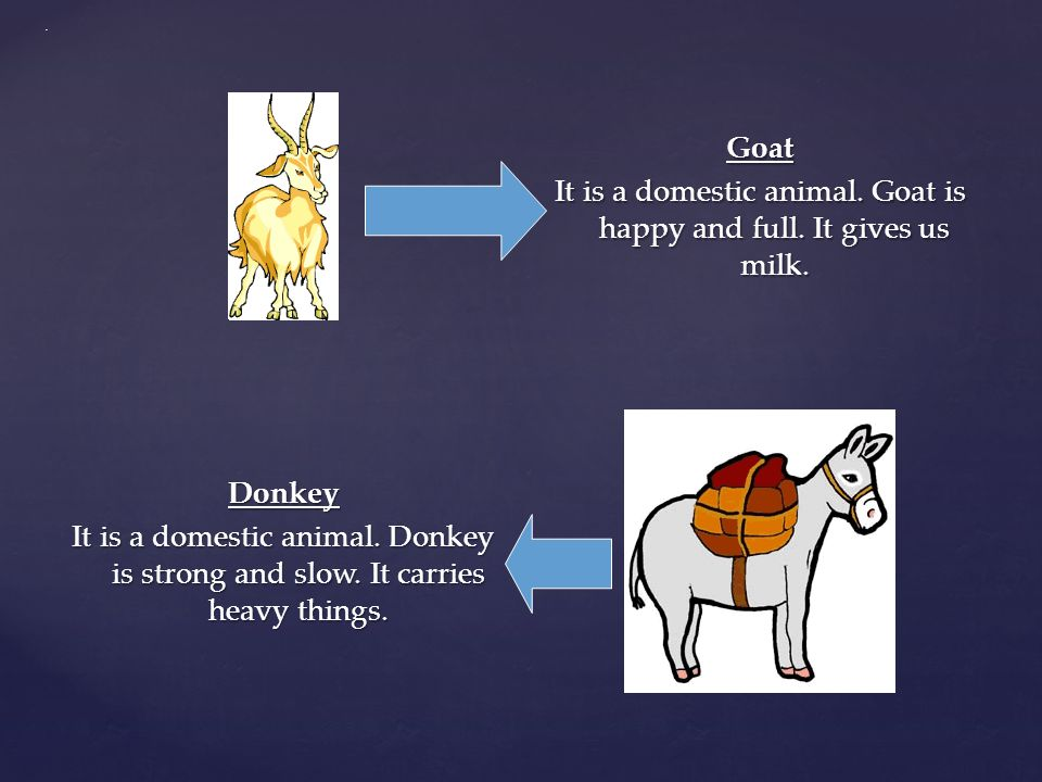 . Goat It is a domestic animal. Goat is happy and full. It gives us milk.