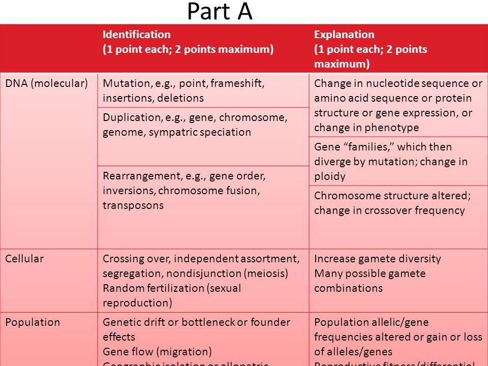 Part A Identification (1 point each; 2 points maximum) Explanation