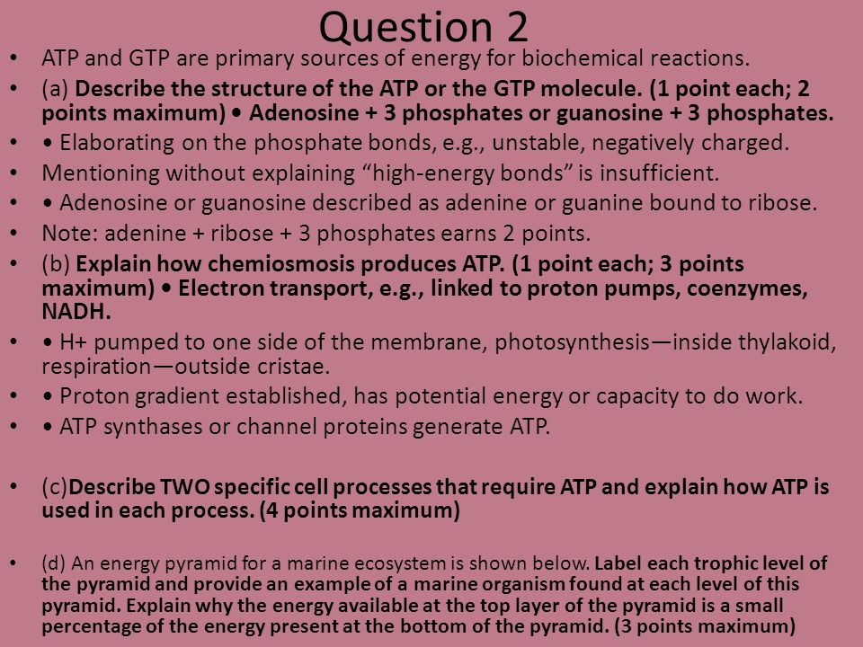 Question 2 ATP and GTP are primary sources of energy for biochemical reactions.