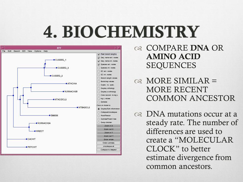4. BIOCHEMISTRY COMPARE DNA OR AMINO ACID SEQUENCES