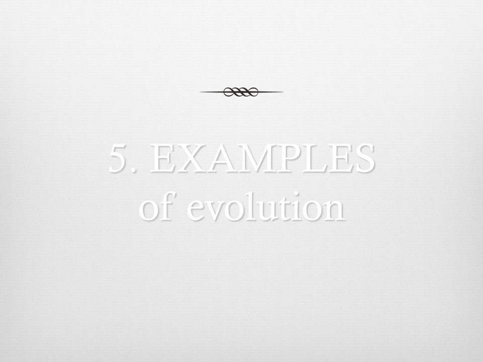 5. EXAMPLES of evolution