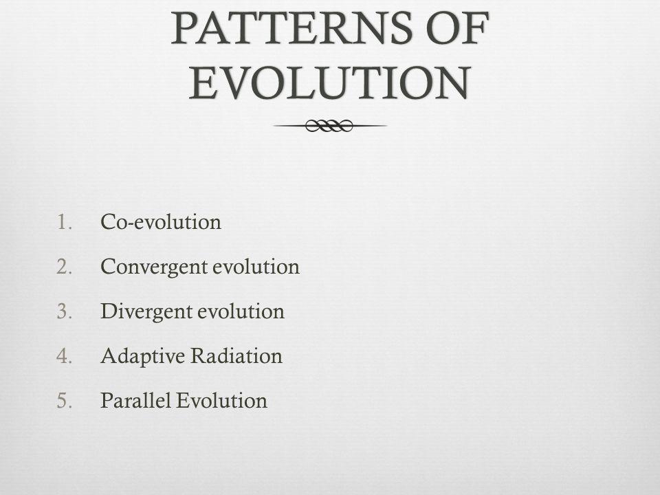 PATTERNS OF EVOLUTION Co-evolution Convergent evolution