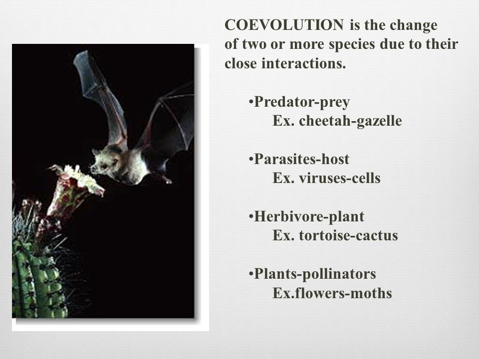 COEVOLUTION is the change