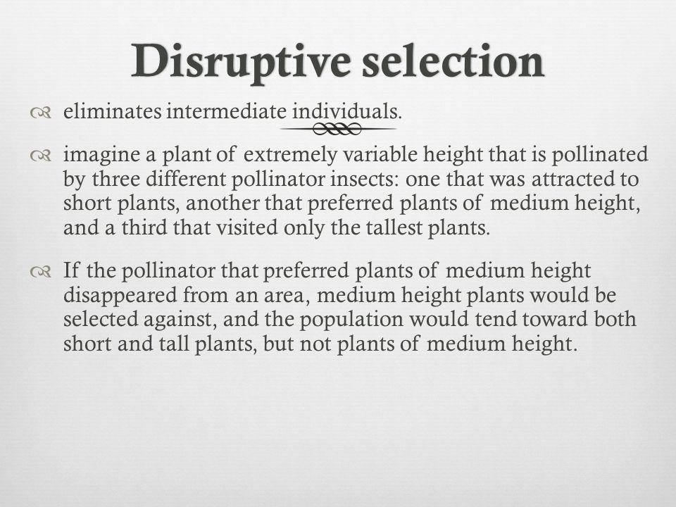 Disruptive selection eliminates intermediate individuals.